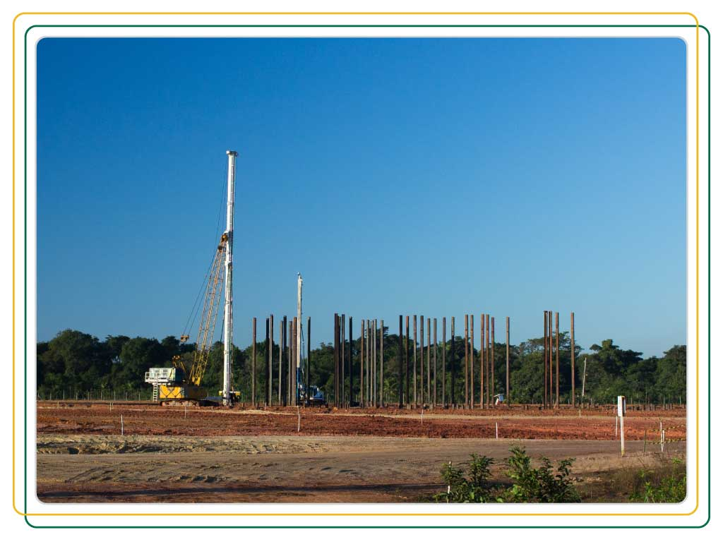 torre-rhinus-03